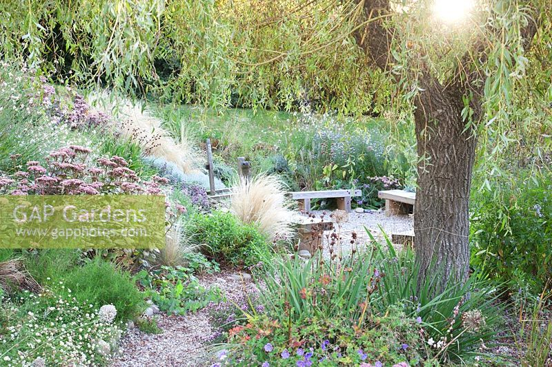 Willow overhanging seating area with late summer planting - Sedlescombe Primary School, Sussex