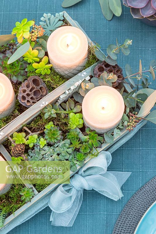 Advent arrangement in wooden box with carved pillar candles and succulents being used as a centrepiece on a dining table