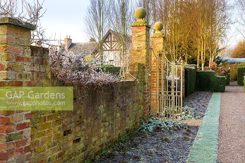 View of the house from the Main Perennial Border on a frosty December morning. Planting includes: fastigate hornbeams, Carpinus 'Frans Fontaine' and clipped yew hedging 'Taxus baccata'
