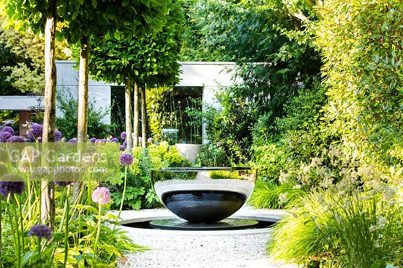 View of gravel path by a row of box-headed pleached Carpinus betulus - hornbeams and Allium 'Globemaster' leading to David Harber water feature.