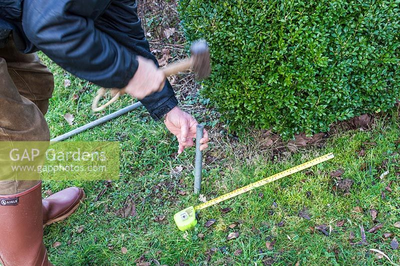 Man hammering iron bars into the ground - Step by step How to make a rose arbour from wire mesh steel rebar.