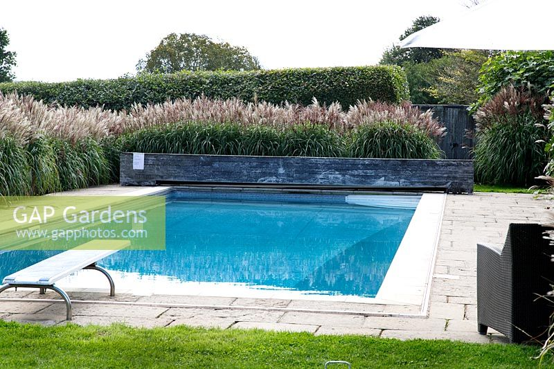 Miscanthus sinensis surrounding the swimming pool at Grendon Court