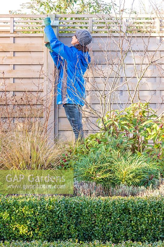 Woman using to a screwdriver to take down a bird box in Winter for cleaning and restoration