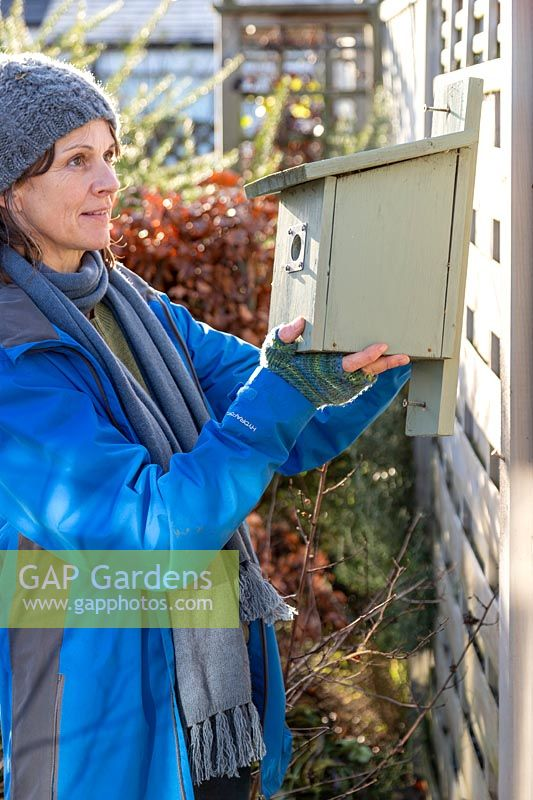 Woman taking down a bird box in Winter for cleaning and restoration