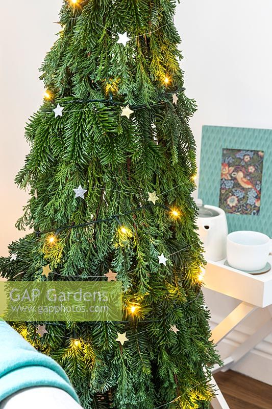 Close up detail of a space saving Christmas Tree made with pine - Abies and conifer - Juniperus foliage attached to a willow obelisk and decorated with star decorations and lights