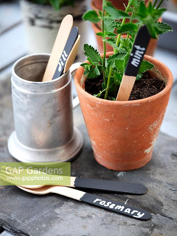 Plant label made from wooden cutlery painted with blackboard paint and chalk paint