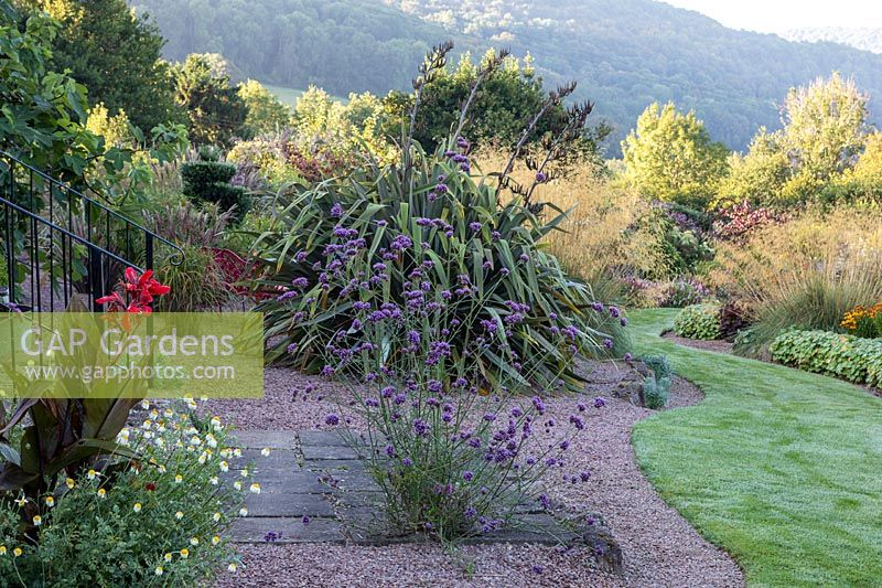 Gravel garden on slope with Phormium in flower and Verbena bonariensis, countryside beyond