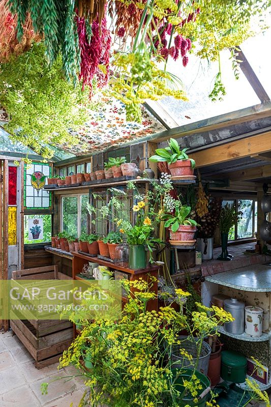 Old fashioned garden room, or potting shed, filled with vintage gardening equipment and paraphanalia, flowers and seed heads hanging out to dry.