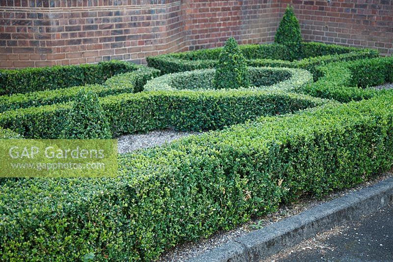 Parterre of clipped hedges