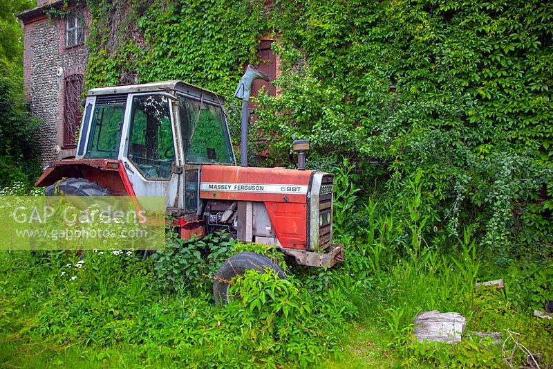 Old Massey ferguson tractor and derelict farm building Norfolk