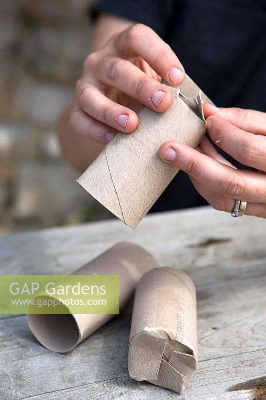 Making seedling containers from paper rolls