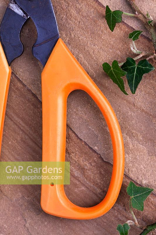 Gardening Alphabet Letter D shown in handle of cutters