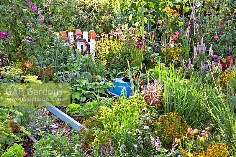 Vegetable garden with raised beds and mixed flower border.