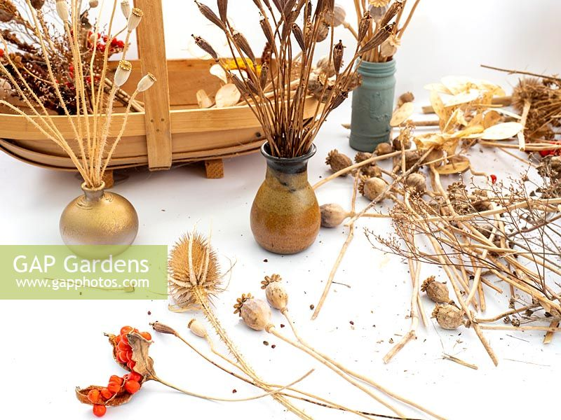 Prepare dried flowers and seed heads for Christmas, autumn, winter arrangements.