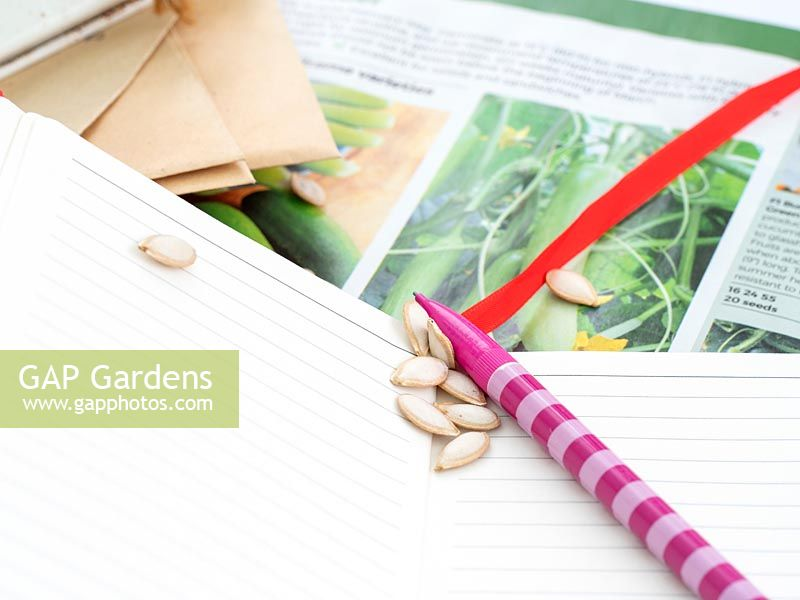 Planning seed purchases for spring and summer.