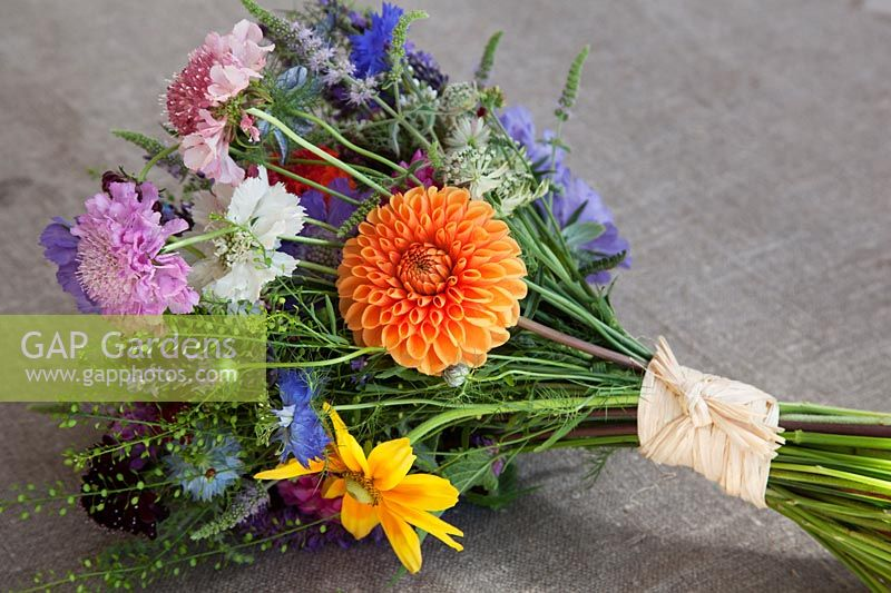 Hand tied bunch of flowers tied with raffia, with Dahlia 'David Howard', Rudbeckia 'Irish Eyes', Astrantia major, Thlaspi 'Green Bell', Scabiosa 'Clive Greaves' and 'Marshmallow Scoop' and Larkspur.