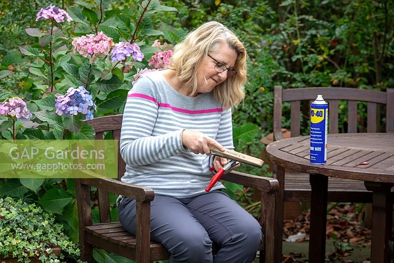 Cleaning and sharpening secateurs using a sharpening stone