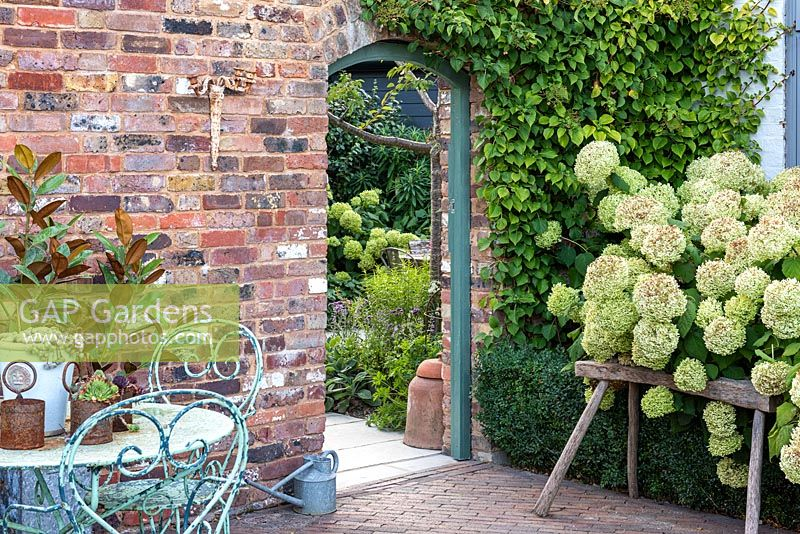 The entrance to a contemporary walled cottage garden flanked by Hydrangea 'Limelight' and a seating area with vintage table and chairs.