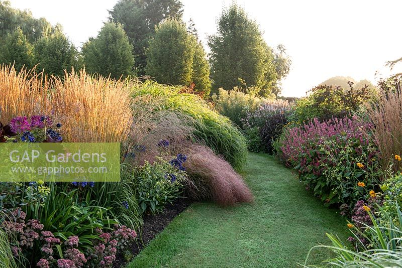 Prairie style herbaceous border planted with clumps of feather reed grasses, Calamagrostis x acutiflora 'Karl Foerster'