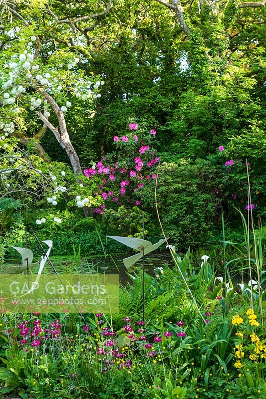 Shady woodland garden with pond, Viburnum opulus 'Roseum' and Rhododendron, bog garden with Candelabra Primula and ornamental birds