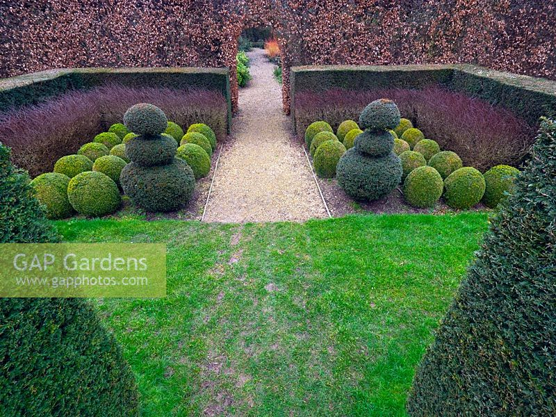 Topiary box balls, clipped yew, hornbeam and purple Berberis hedges at East Ruston Old Vicarage, Norfolk,  UK.