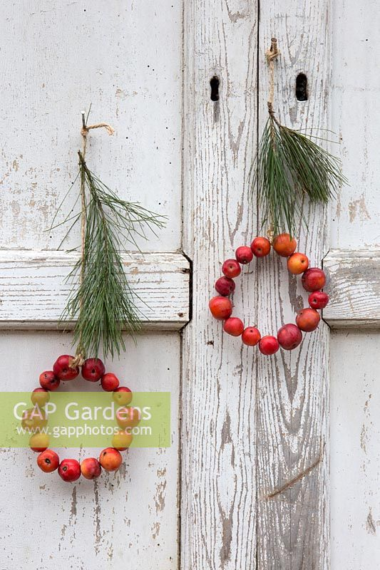 Crab apple mini wreaths with pine twig hanging on rustic wooden backdrop. Styling: Marieke Nolsen
