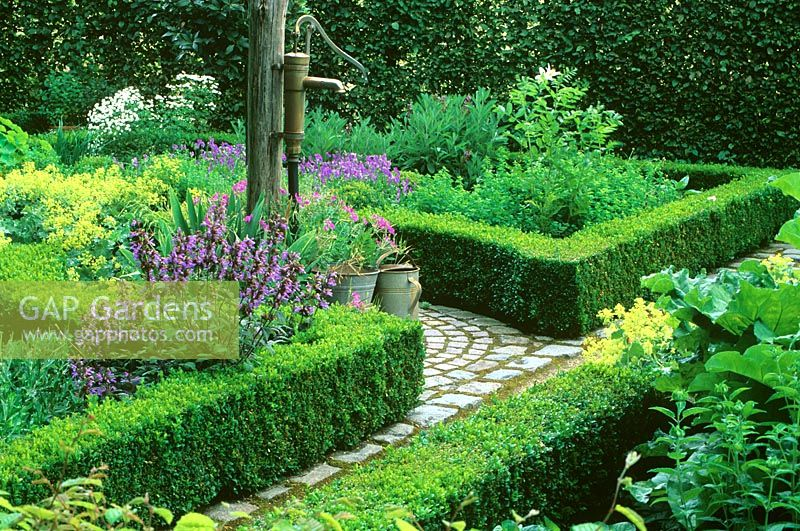 Traditional water tap in formal garden with clipped Buxus hedges surrounding mixed flowerbeds.