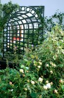 Trellis with mirror background reflecting planting in garden