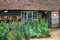 Nursery at Great Dixter in Sussex. Pots and plants for sale in yard