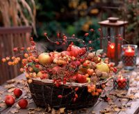 Basket filled with Malus, Rosa hips, Corylus stems and Juglans - On table with red candls in glass candle holders and rusty metal lantern
