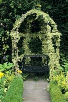Bower covered with Hedera Helix 'Cavendishii' - Ivy at Little Cottage Hampshire