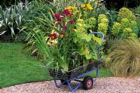 Trolley laden with plants at garden centre