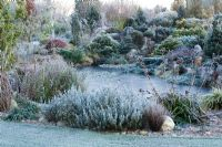 The rock garden and frozen pond in John Massey's garden on a frosty winter's morning.