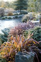 Looking over the frozen pond in John Massey's garden on a frosty winter's morning. Phormium 'Jester' in the foreground.
