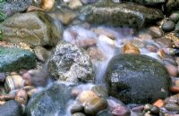 Water running over stones and pebbles in stream