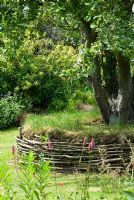 Old apple tree with a circular grass turf seat and woven Hazel, view to the long borders. 27 June. Lucy Redman's School of Garden Design, Rushbrook, Nr. Bury St. Edmunds, Suffolk.