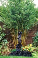Dramatic border of Phyllostachys aureosulcata f. spectabilis, Ophiopogon and bronze statue - Queensgate, Bristol NGS