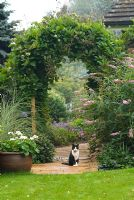 View along paved pathway through Wooden arch covered with Cobaea scandens, Buddleja and Miscanthus sinensis 'Morning Light' planted nearby, white flowered Pelargonium in a container