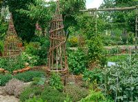 Decorative vegetable garden with willow obelisks, broad beans, Chenopodium bonushenricus- Good King Henry, Thymus, and Phaseolus coccineus