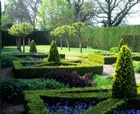 Hedged parterre with topiary cones