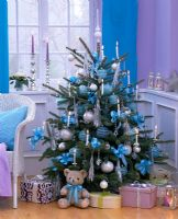Picea pungens 'Glauca' - decorated christmas tree in living room, blue and silver colour theme