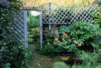 Small walled patio garden with trellis and mirror used to cover shed door