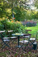 Garden in Autumn with Dahlias and table with apples from tree above