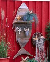 Miscanthus and Festuca cinerea in pots, fish shaped wooden shelf, wall mounted basket, with sea shells and found maritime objects