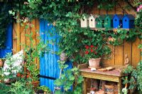 A wooden summerhouse with mixed plants and painted bird boxes outside