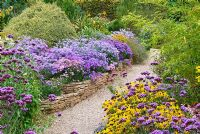 View up shingle path to Aster amellus border in The Rock Garden at the National collection of Autumn flowering Asters - Asters, Verbena bonariensis, Rudbeckia deamii and Bamboo