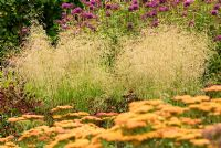 Perennial border combination with Deschampsia cespitosa 'Goldtau', Monarda 'Scorpion' and Achillea 'Walther Funcke'