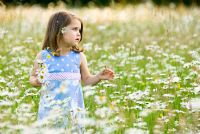 Little girl in a field of daisies holding a posy