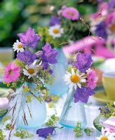 Small table decorations in glass vases -  Campanula, Erigeron, Argyranthemum and Alchemilla