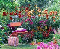 Sitting area in front of mixed border with Dahlia, Zinnia, Phlox and Salvia splendens